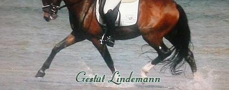 Gestüt Lindemann